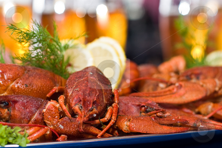 Crawfish stock photo, Food series: fresh boiled crawfish with beer by Gennady Kravetsky