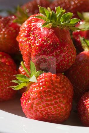 Strawberry stock photo, Food series: freshly grown tasty strawberry on plate by Gennady Kravetsky
