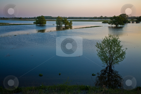 High water stock photo, Landscape series: Ukraine, river Desna, spring, high water by Gennady Kravetsky