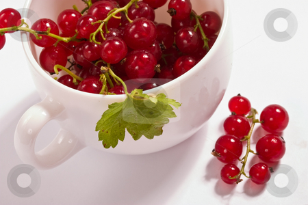 Red currant stock photo, Food series: tasty ripe and juicy red currant by Gennady Kravetsky