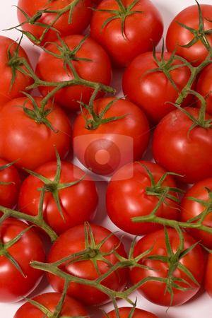 Tomato stock photo, Vegetable series: red tomato background, top view by Gennady Kravetsky