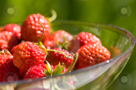 Strawberry stock photo, Food series: freshly grown tasty strawberry on bowl by Gennady Kravetsky