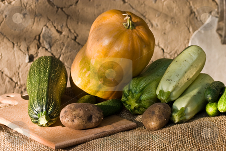 Vegetables stock photo, Food series: different vegetables on the wall background by Gennady Kravetsky