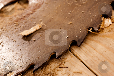 Circular saw stock photo, Tool series: circular saw on wooden table with sawdust by Gennady Kravetsky
