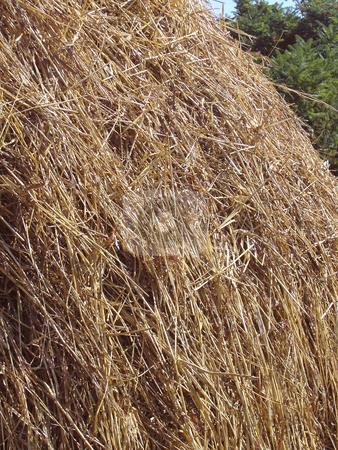 Haystack stock photo, Haystack by Andrey Ivanov