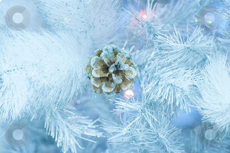 The cone among snow branches stock photo, The cone among snow branches by Andrey Ivanov