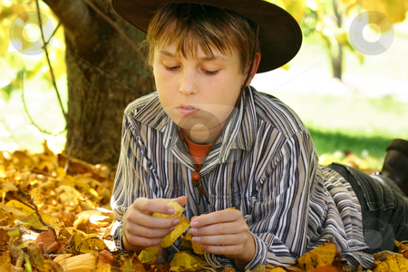 Boy in autumn leaves foliage stock photo, A child lays in golden yellow autumn foliage under a deciduous tree - 400iso by Leah-Anne Thompson