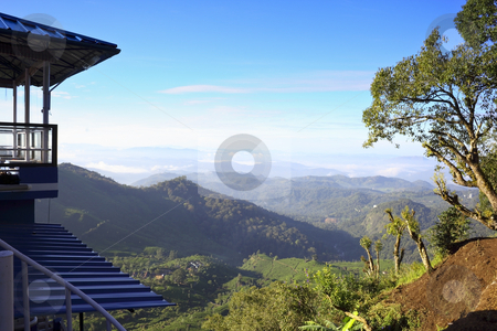 Tea collection station at munnar stock photo, A view across the western ghats in the early morning by Mike Smith