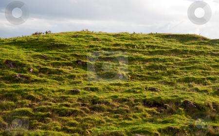 Skye hillside stock photo, Hillside on the Isle of Skye, Scotland by Jaime Pharr