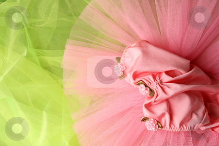 Ballet Costume stock photo, Pink Ballet Costume on a green background by Vanessa Van Rensburg