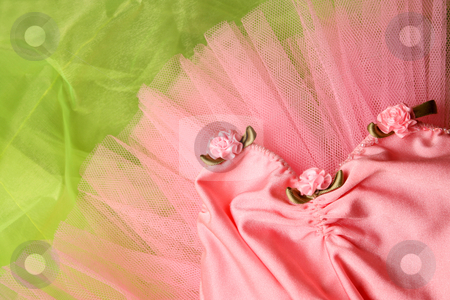 Ballet Tutu stock photo, Pink Ballet costume on a bright green background by Vanessa Van Rensburg
