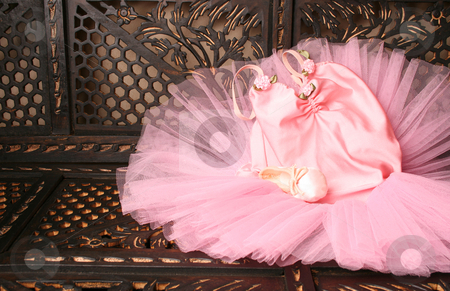 Ballet Costume stock photo, Pink Ballet costume and miniature shoe on a rustic background by Vanessa Van Rensburg