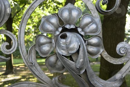 Lattice of a garden  stock photo,  by Matva Vladimir