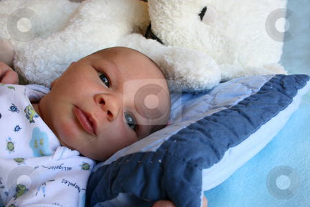 Baby and Bear stock photo, Week old baby boy on a blue blanket early in the morning by Vanessa Van Rensburg