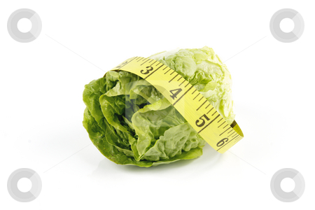 Salad Lettace and Tape Measure stock photo, Small single fresh green salad lettace and yellow tape measure on a reflective white background by Keith Wilson