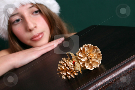 Christmas Decorations stock photo, Brunette Teenager, FOCUS on the gold pine cones by Vanessa Van Rensburg