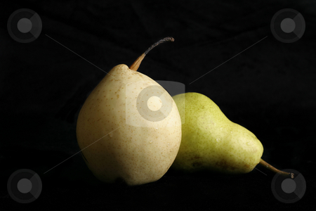 Two Pear stock photo, Two different variety of pears on a black background by Leah-Anne Thompson