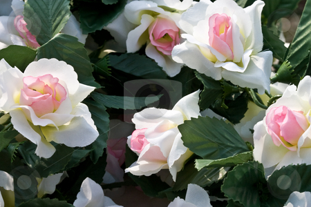 Artificial flowers stock photo, Background series: artificial flowers, white roses, textile by Gennady Kravetsky