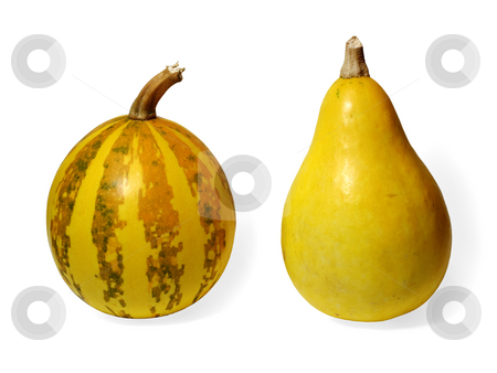 Two small pumpkins stock photo, Two small pumpkins on white background by Onyshchenko Viktor