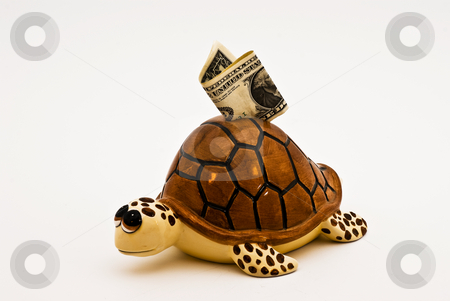 Turtle bank stock photo, A piggybank in the shape of a turtle on white background by bah1969