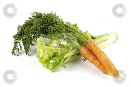 Carrots and Celery stock photo, Fresh bunch of orange carrots with green leafs and celery on a reflective white background by Keith Wilson