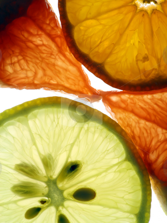 Transparent slices of citrus stock photo, Translucent slices of a red grapefruit, yellow lemon and orange tangerine. by Aleksandr Volokov