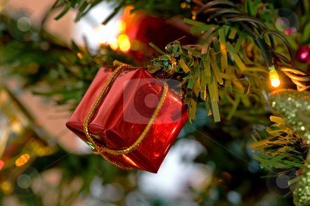 Red christmas box stock photo, Some christmas box decorated on a tree by Tito Wong