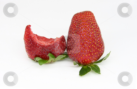 Strawberry stock photo, You can taste it too, delicious.. by ARPAD RADOCZY