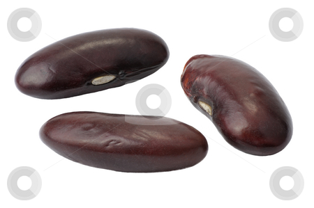 Red Beans stock photo, Seed of red beans close up by Vladimir Blinov