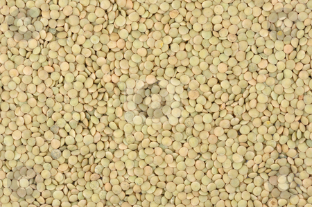 Lentils stock photo, Seeds of lentils close up on a white background. by Vladimir Blinov