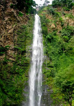 Wli Waterfall in Agumatsa Park in Ghana stock photo, Water falling 1600 feet down Wli Waterfall near Hohoe in Ghana by Steven Heap