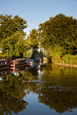Canal barges reflected in calm water disturbed by ducks stock photo, Ducks creating ripples in canal near Ellesmere in Shropshire by Steven Heap