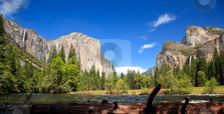 Log framing Yosemite Valley stock photo, View into Yosemite Valley with cedar colored log in foreground by Steven Heap