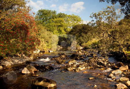 River flowing in welsh valley stock photo, Rocky river bed in secluded valley by Steven Heap