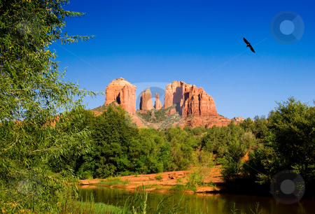 Cathedral Rocks near Sedona stock photo, View of Cathedral Rocks in Sedona with water in foreground and bird soaring by Steven Heap