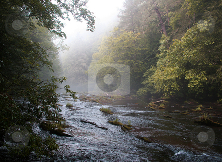 Rural River in early fall stock photo, Peaceful river with rocks and overhanging autumn trees by Steven Heap