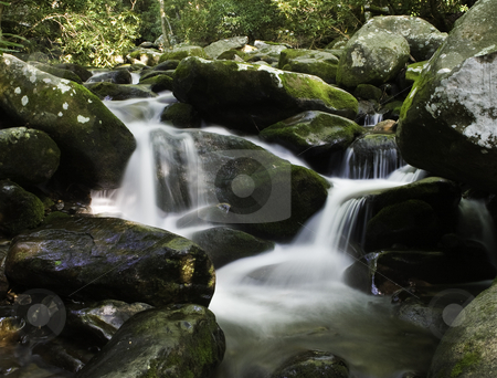 Rocky River stock photo, Water cascading over moss covered rocks in forest setting by Steven Heap