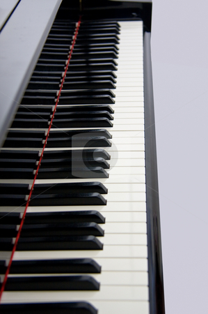 Piano Keyboard stock photo, Close up of grand piano keyboard by Steven Heap