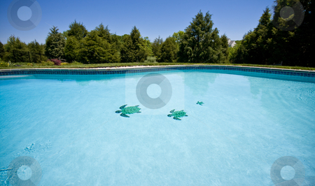 Wide angle view of a garden pool stock photo, Water level view of a pool stretching into the distance and showing three tiled turtles on the floor of the pool by Steven Heap