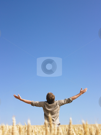 Man in Wheat Field With Arms Outstretched stock photo, Man standing in wheat field with arms outstretched. Vertically framed shot. by Mog Ddl
