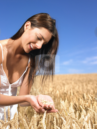 Woman in wheat field stock photo, Woman holding wheat in her hands over field by Mog Ddl