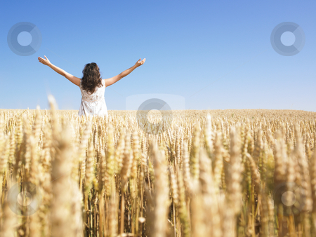 Woman in Wheat Field With Arms Outstretched stock photo, A woman standing in wheat field with arms outstretched. Horizontally framed shot. by Mog Ddl