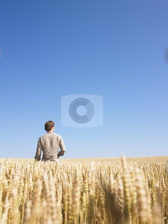 Man in Wheat Field stock photo, Man standing in wheat field. Vertically framed shot. by Mog Ddl