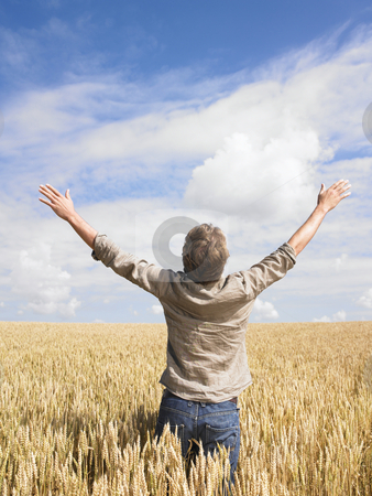 Man in wheat field stock photo, Man standing in wheat field opening arms by Mog Ddl