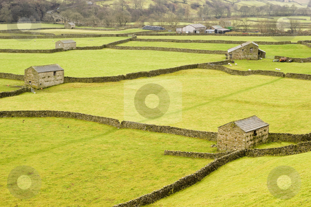 Swaledale stock photo, Swaledale in Yorkshire Dales North Yorkshire England by Stephen Meese