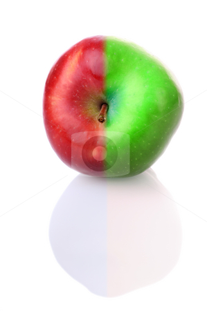 Fresh apple with red and green half stock photo, Fresh apple with stem and reflection, with red and green half by Iryna Rasko