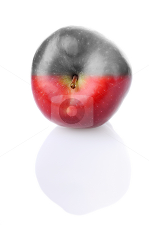 Fresh apple with red and colourless half stock photo, Fresh apple with stem and reflection, with red and colourless half by Iryna Rasko
