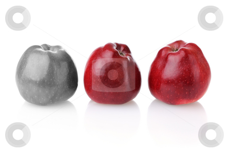 Different colourless apple with two red ones stock photo, Different colourless apple with three fresh red apples on white background by Iryna Rasko