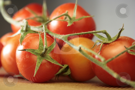 Tomatoes stock photo, Close up of fresh red tomatoes by Marina Magri