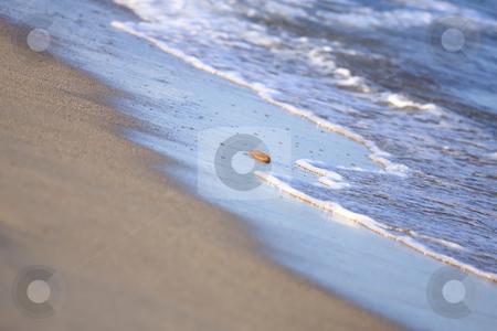 Still-life stock photo, Still-life on the beach by ARPAD RADOCZY